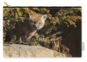 Blue Eyes Baby Fox Carry-all Pouch