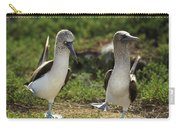 Blue-footed Booby Pair In Courtship Carry-all Pouch by Tui De Roy