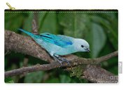 Blue-gray Tanager Carry-all Pouch
