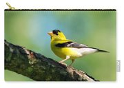 Blue Heart Goldfinch Carry-all Pouch