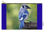 Blue Jay At Feeder Carry-all Pouch