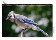 Blue Jay Carry-all Pouch