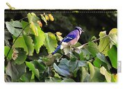 Blue Jay In A Tree Carry-all Pouch