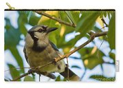 Blue Jay In Hiding Carry-all Pouch
