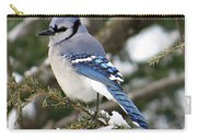 Blue Jay On Hemlock Carry-all Pouch