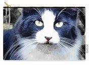 Blue Kitty Two Carry-all Pouch
