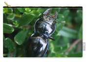Blue Lined Beetle Carry-all Pouch