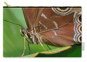Blue Morpho Carry-all Pouch