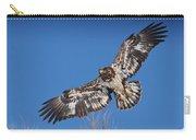 Blue Sky Flight Carry-all Pouch