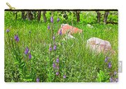Blue Vervain And Rocks In Pipestone National Monument-minnesota  Carry-all Pouch