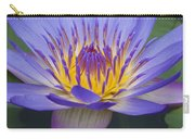 Blue Water Lily - Nymphaea Carry-all Pouch by Heiko Koehrer-Wagner