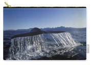 Blue Whale Tail Sea Of Cortez Carry-all Pouch
