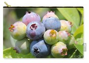 Blueberries Closeup Carry-all Pouch