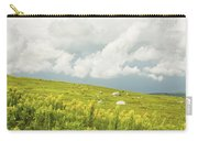 Blueberry Field And Goldenrod With Dramatic Sky In Maine Carry-all Pouch by Keith Webber Jr