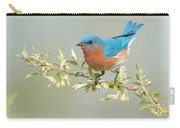 Bluebird Floral Carry-all Pouch