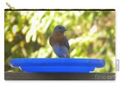 Bluebird Frisbee Carry-all Pouch