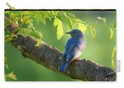 Bluebird In The Morning Carry-all Pouch