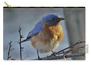 Bluebird In The Snow. Carry-all Pouch