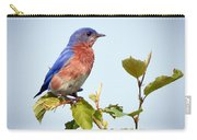 Bluebird On Top Carry-all Pouch