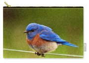 Bluebird  Painting Carry-all Pouch by Jean Noren