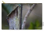 Bluebird With Nest Material In Beak Carry-all Pouch