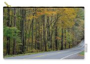 Blueridge Parkway Virginia Carry-all Pouch