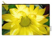 Blushing Sunshine Carry-all Pouch