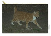 Bob-tail Cat Carry-all Pouch