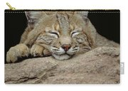 Bobcat, Arizona Carry-all Pouch