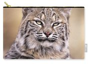 Bobcat Cub Portrait Montana Wildlife Carry-all Pouch by Dave Welling