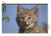 Bobcat Kitten Carry-all Pouch