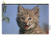 Bobcat Kitten Carry-all Pouch by Tim Fitzharris