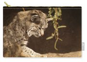Bobcat Carry-all Pouch by James Peterson