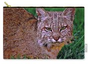 Bobcat Sedona Wilderness Carry-all Pouch