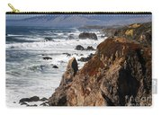 Bodega Bay Color Carry-all Pouch