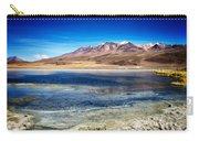 Bolivia Desert Lake Framed Carry-all Pouch