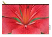 Botanical Beauty 2 Carry-all Pouch