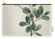 Botanical Engraving Carry-all Pouch