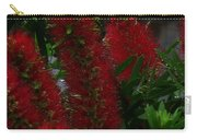 Bottle Brush Carry-all Pouch