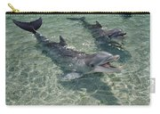 Bottlenose Dolphin In Shallow Lagoon Carry-all Pouch