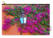 Bougainvillea And Lamp, Mexico Carry-all Pouch