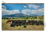 Boulder Beef Carry-all Pouch
