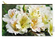 Bouquet Of Alstroemeria Carry-all Pouch
