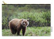 Bow Lake Bear Carry-all Pouch