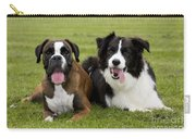 Boxer And Border Collie Carry-all Pouch