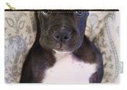 Boxer Puppy Laying In Bed Carry-all Pouch by Stephanie McDowell
