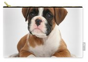 Boxer Puppy Carry-all Pouch by Mark Taylor