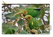 Brace Of Chiriqui Conures Carry-all Pouch