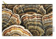 Bracket Fungus 1 Carry-all Pouch