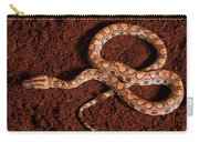 Brazilian Rainbow Boa Carry-all Pouch